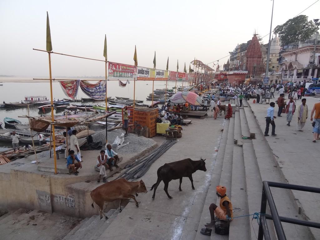 16 mai dans Uttar Pradesh dsc03527